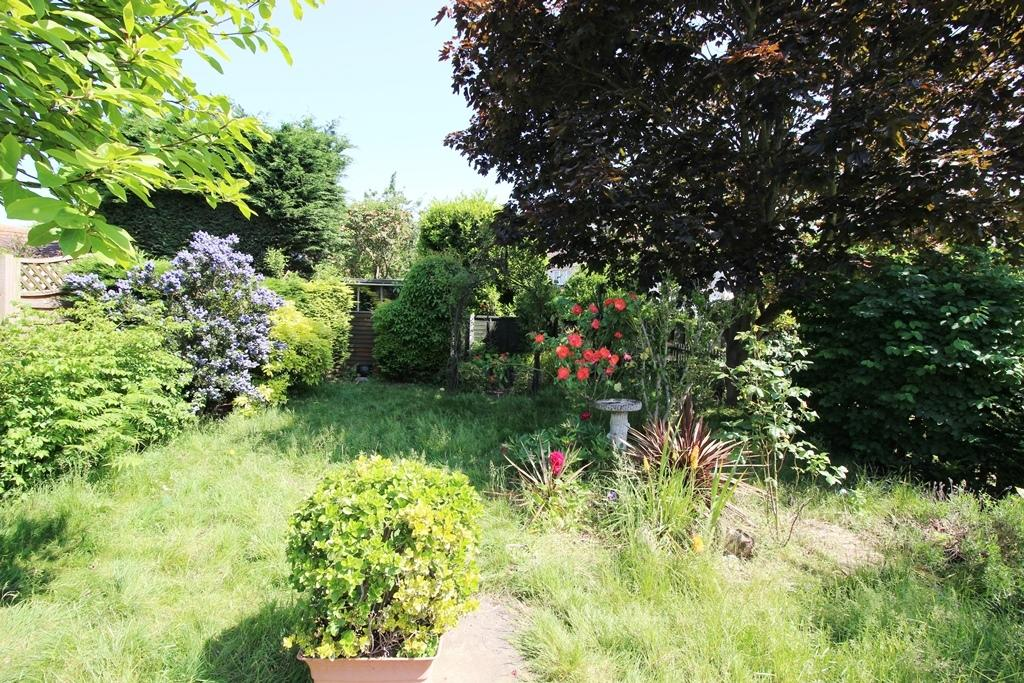 Rear Garden 2