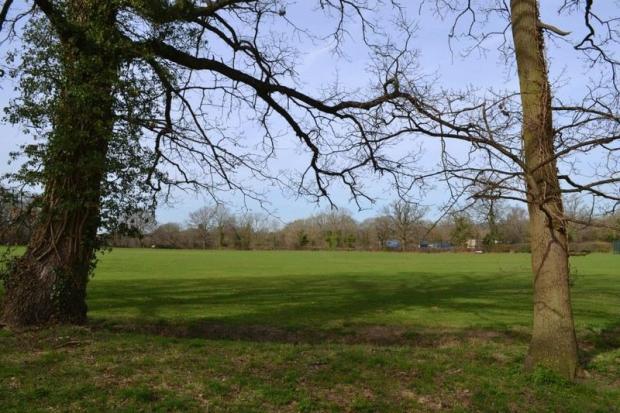 View to parkland