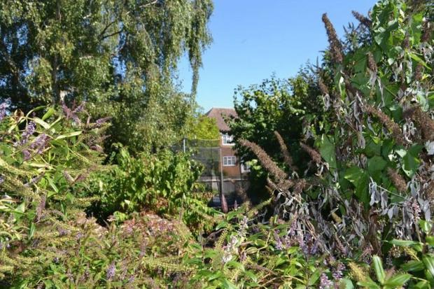 Extra garden
