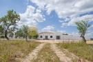Farm House in Lagoa,  Algarve