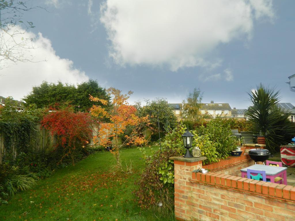 Garden aspect two