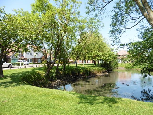Pond (scenic aspect)