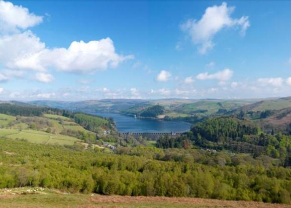 Lake Vyrnwy Estate