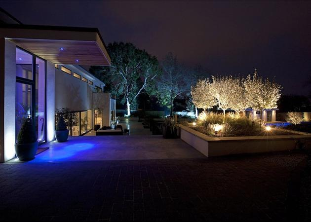 Garden At Night