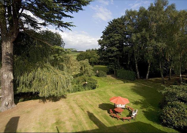 Open Lawn