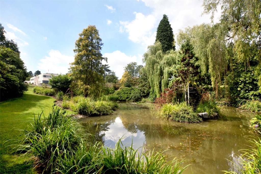 Sunningdale: Pond