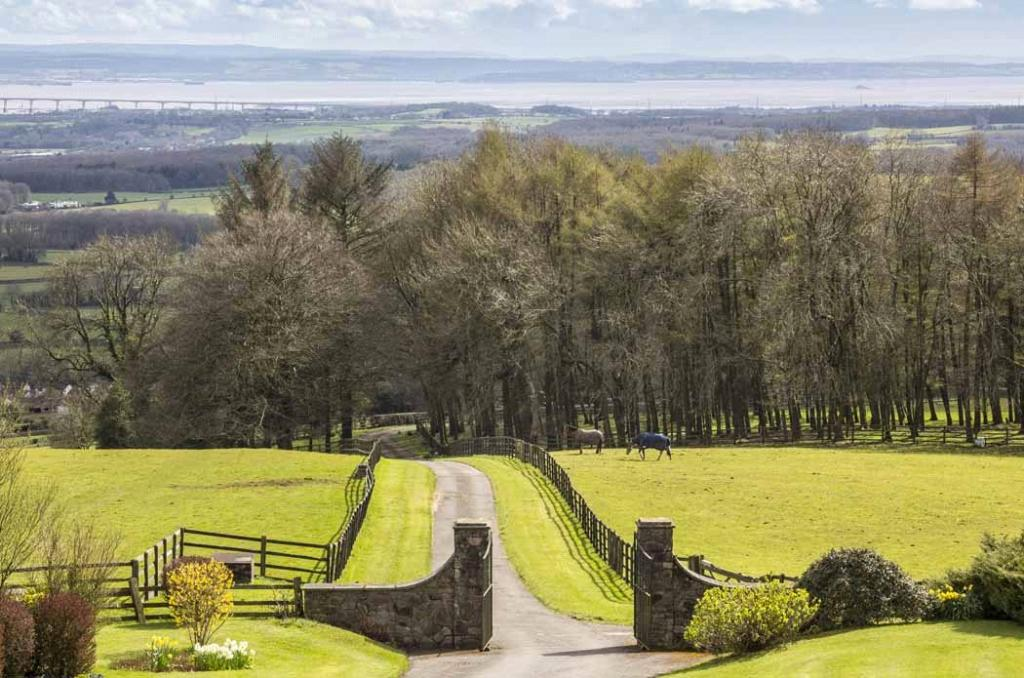 Equestrian Farm For