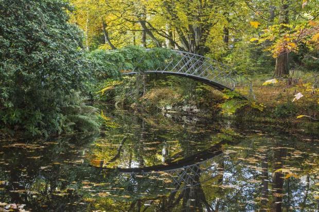 Bridge over Calm