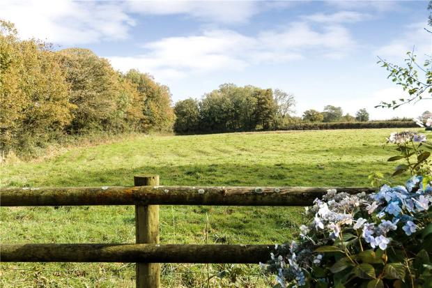 Fields Land