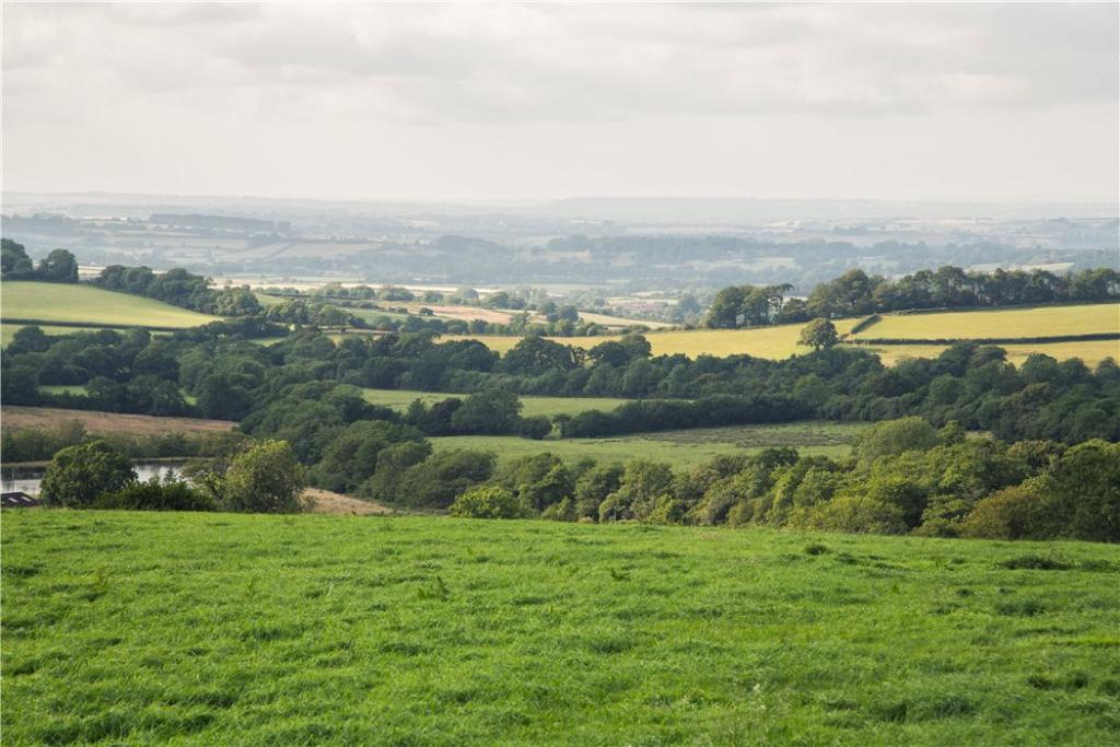 Quality Grassland