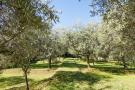 Detached house for sale in Camaiore, Lucca, Italy