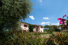 4 bedroom Detached home in Castagneto Carducci...