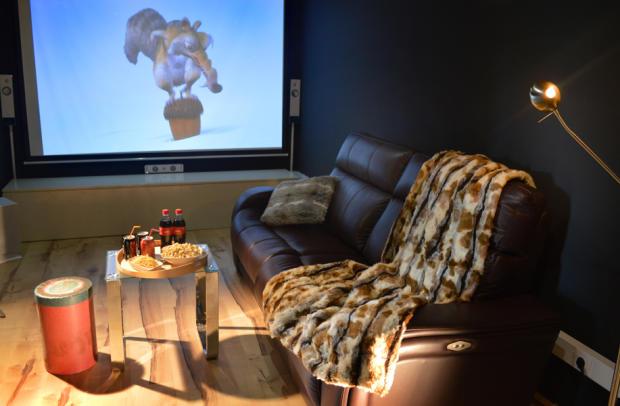 Cinema/TV room
