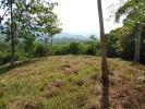 Ojochal Land
