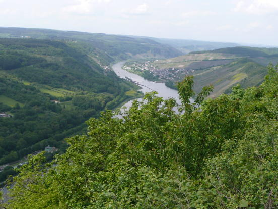 Mosel view nearby