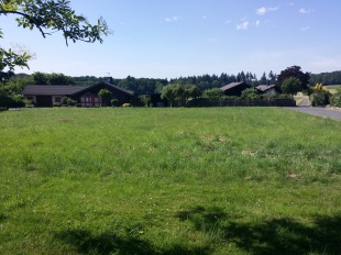 Plot for sale in Rhineland-Palatinate...