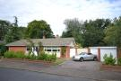 Detached Bungalow for sale in Softley Drive, Norwich