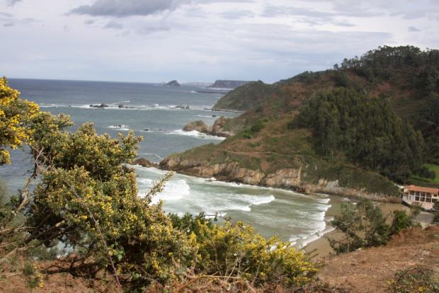 View from Cliff