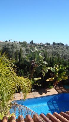 View to an olivar