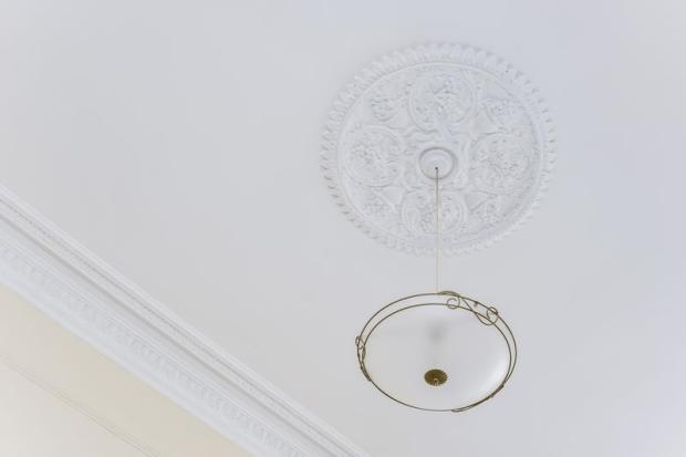 Ceiling Rose a...