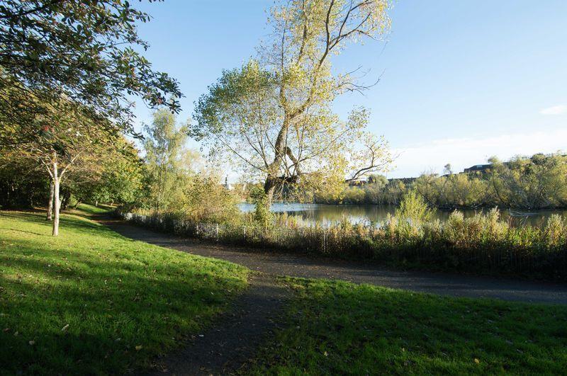 Lochend Park 2