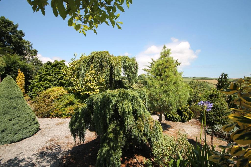 garden and view 4