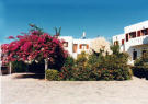 12 bed new property in Makrygialos, Lasithi...