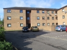 Paisley Apartment to rent