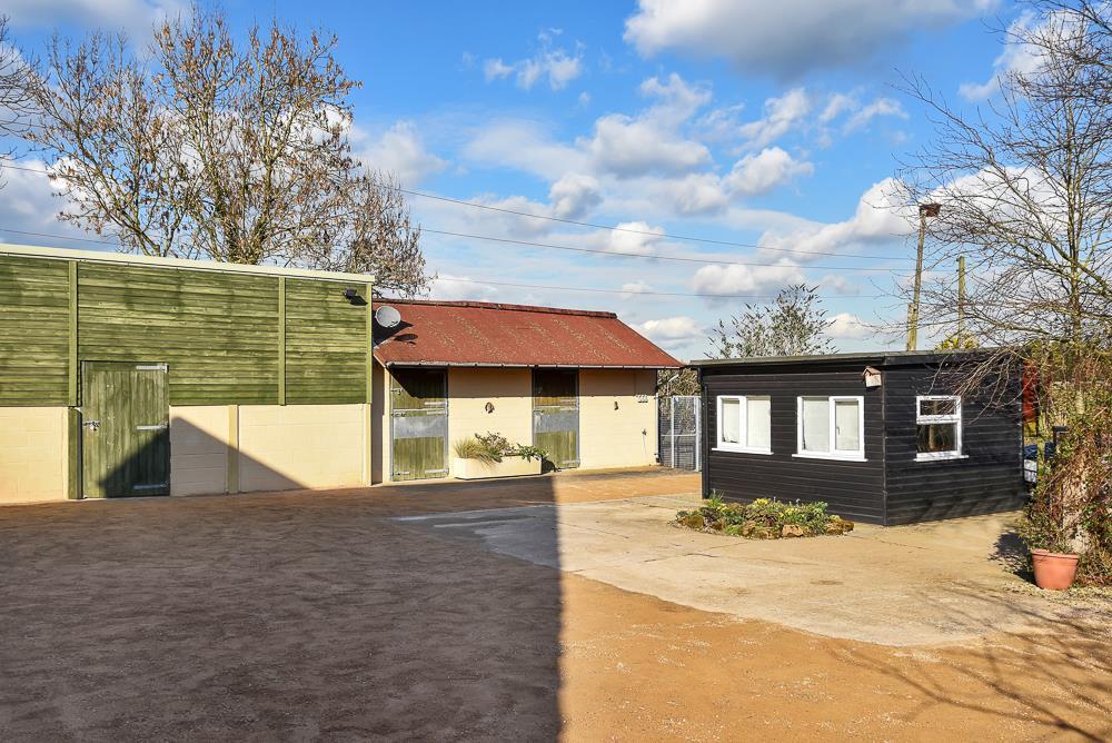 Willow Tree House EX