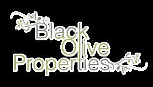 Black Olive Properties, Alicantebranch details