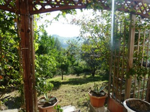Detached property in Calabria, Cosenza...