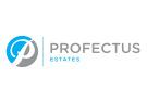 Profectus Estates, Moseley details
