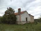 Farm Land for sale in Castelo Branco...