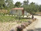 Beira Baixa Farm Land