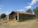 Farm Land in Beira Baixa for sale
