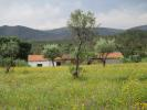 Farm Land for sale in Penamacor, Beira Baixa