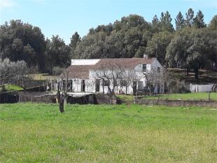 Farm House for sale in Beira Baixa, Covilhã