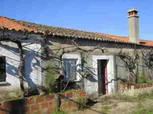 Farm Land in Beira Baixa, Fund�o