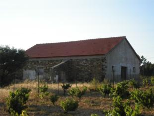 Farm House in Castelo Branco...