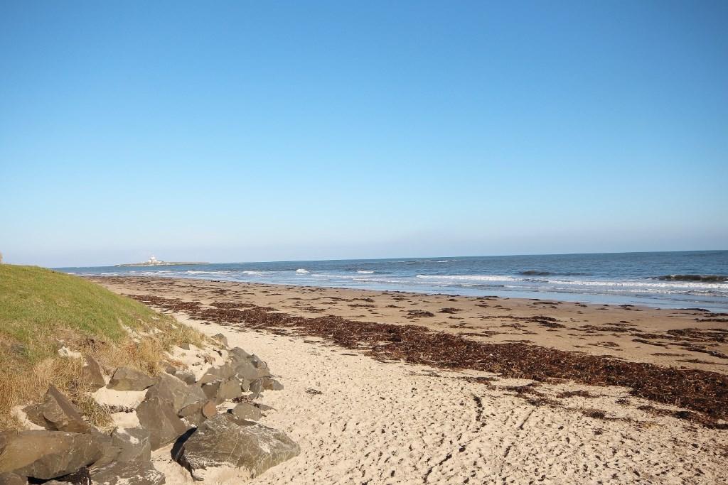 HAUXLEY BEACH