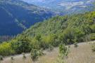 Farm Land in Umbria, Perugia, Preci