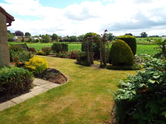 Garden and View