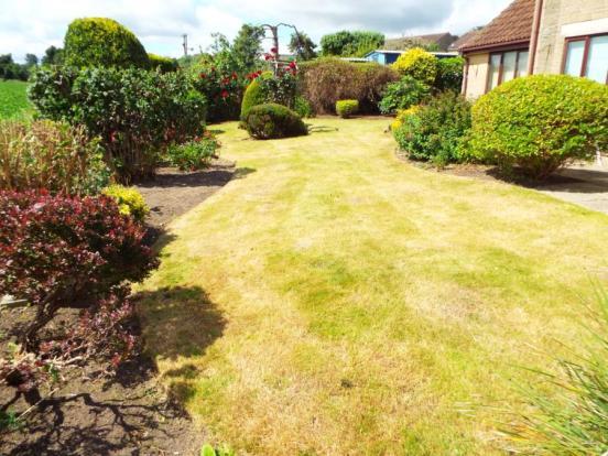 Garden (Rear)