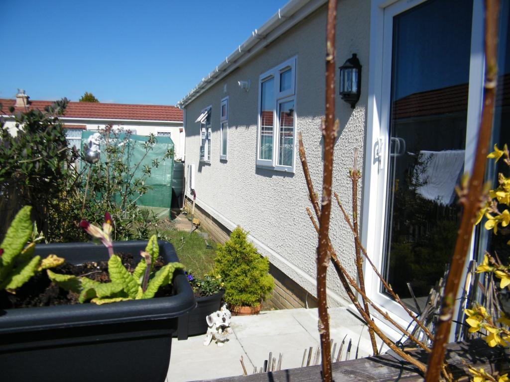 Side Garden (Left)