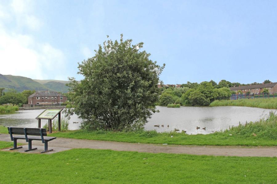 Delph Pond
