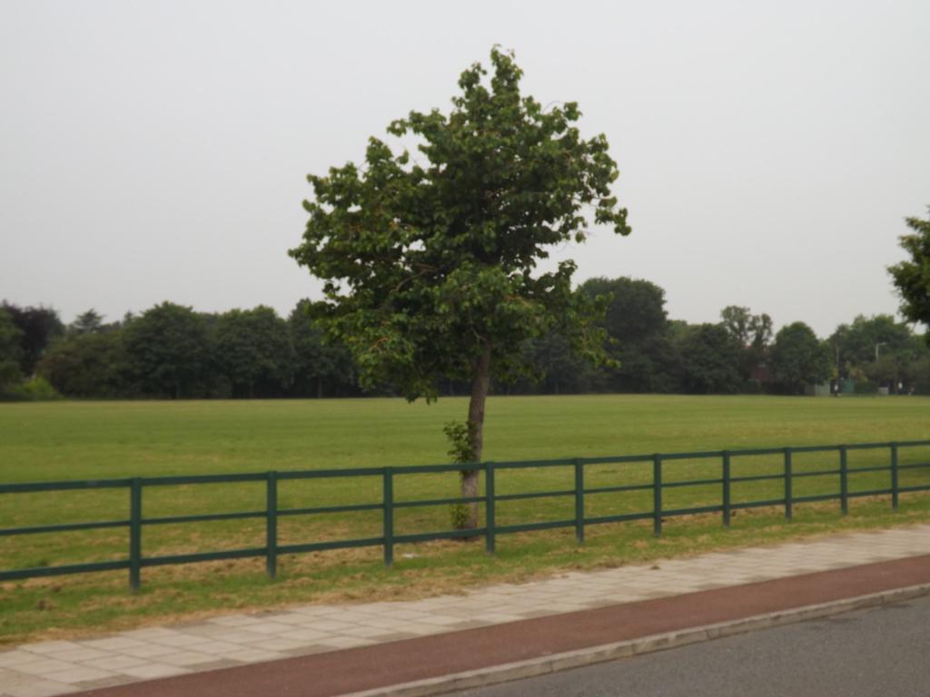 Adjacent park