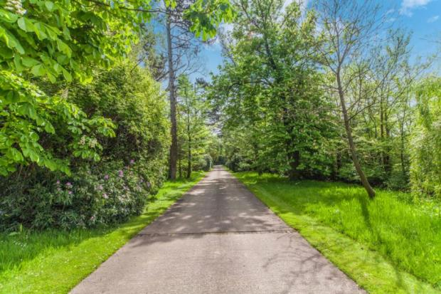 Driveway To Property