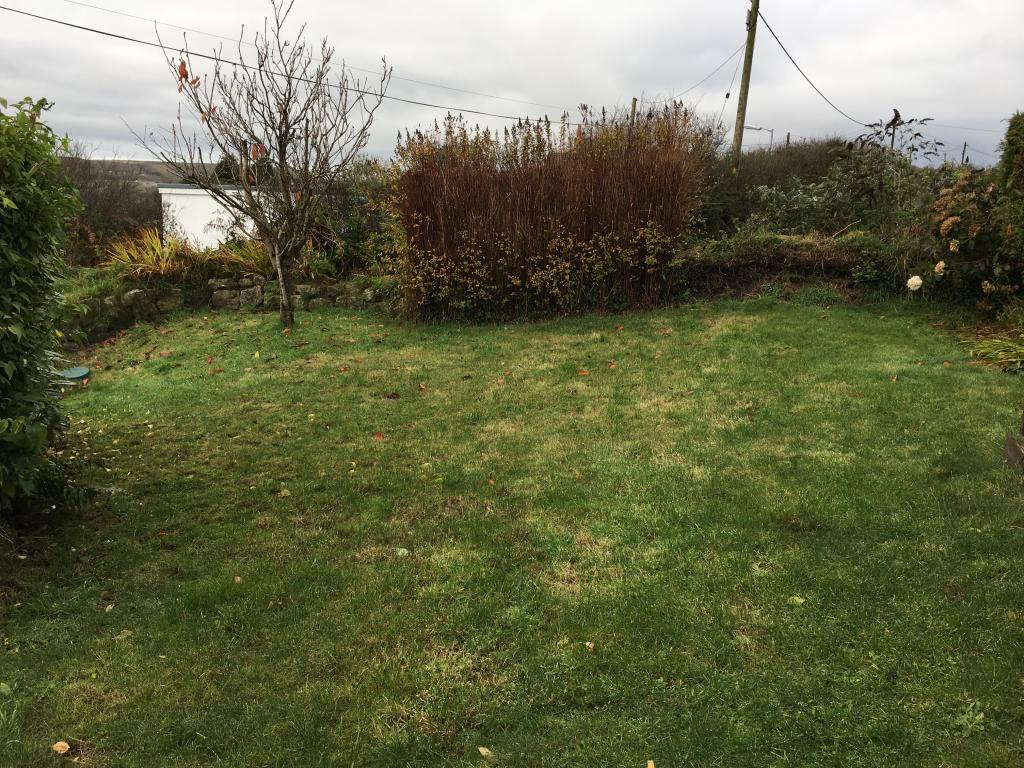 Bcak Garden
