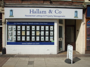 Hallam & Co Property Services, Tauntonbranch details