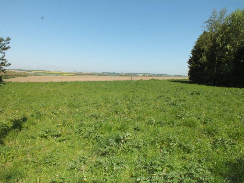 Grassed area t...